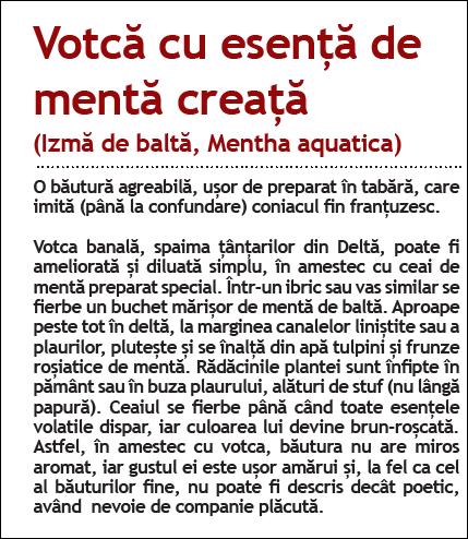 Adrian Gagea votca DD